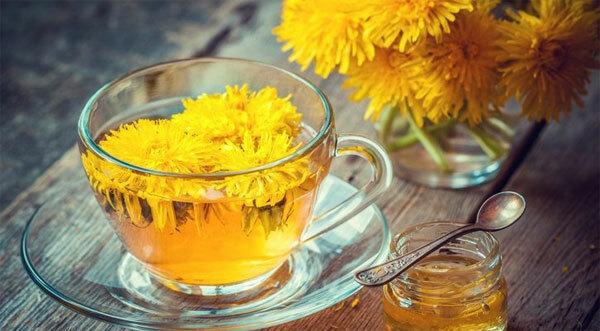 Trà bồ công anhRễ cây bồ công anh chứa nhiều chất dinh dưỡng giúp hỗ trợ giảm cân. Uống trà bồ công anh cũng giúp loại bỏ độc tố, muối dư thừa, đường và chất béo khỏi cơ thể.