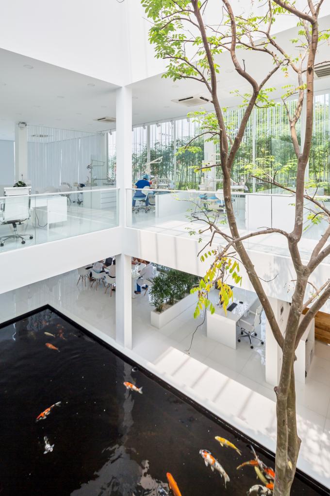 Ở chính giữa phòng nha có hồ nước lớn với đàn cá koi đủ sắc bơi lội, tạo thêm phần sinh động và tươi mát cho kiến trúc.