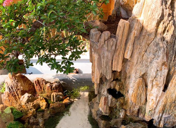 Để làm một hồ cả cảnh như thế này, nam ca sĩ cho biết chi phí khoảng 2 triệu đồng, tuy nhiên sẽ tăng lên nếu bạn lựa chọn dùng đá phong thủy và cây bonsai để trang trí.