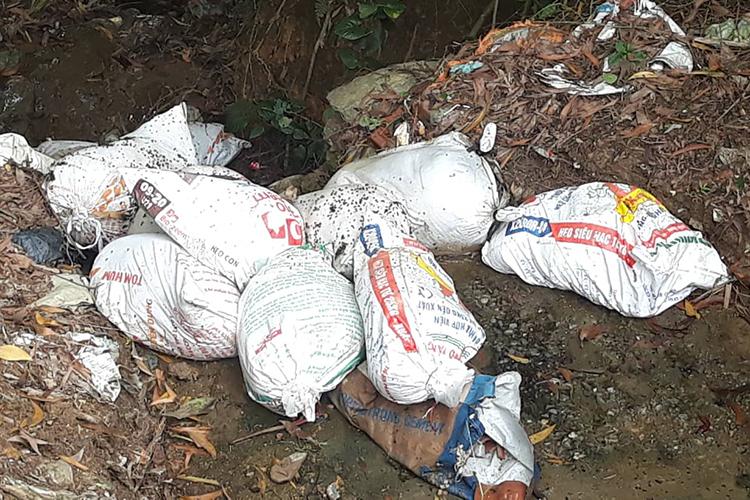 7 bao tải chứa lợn chết nghi bị dịch tả châu Phi tại xã Ngọc Sơn được phát hiện sáng 23/10. Ảnh: CTV.