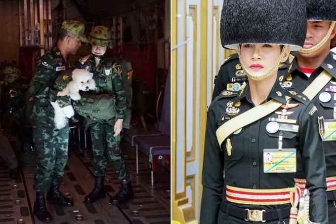 Trong loạt ảnh vừa công bố còn cónhiều hình ảnh Hoàng quý phi Sineenat và nhà vua mặc quân phục cùng tham gia các buổi diễn tập huấn luyện hoặc chơi đùa với chó cưng của hoàng gia. Ảnh: Straistimes.