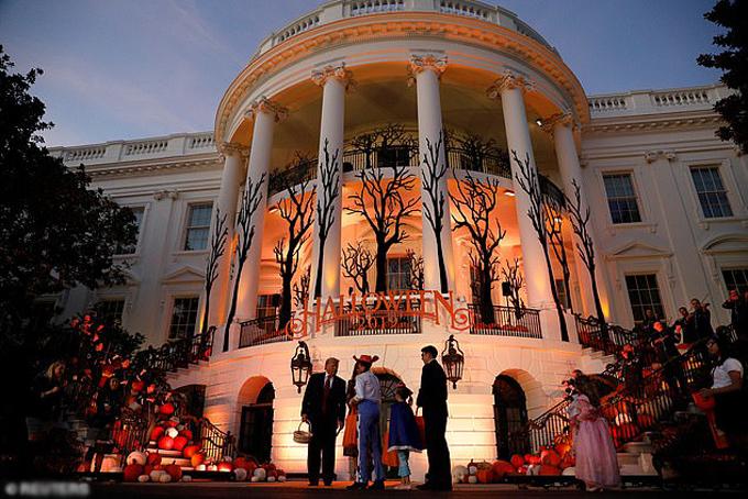 Năm nay, Nhà Trắng được trang trí theo chủ đề khu rừng ma ám.