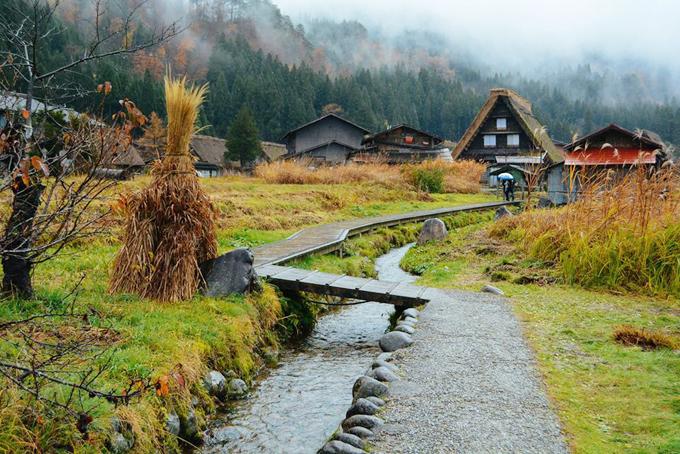 Làng cổ Shirakawa-go cũng là một trong những địa điểm triển khai tour lẻ cho khách đi tự túc. Ảnh: Nguyên Chi