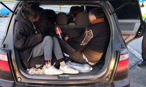 17 người Việt bị bắt khi trốn trong ôtô vào Đức