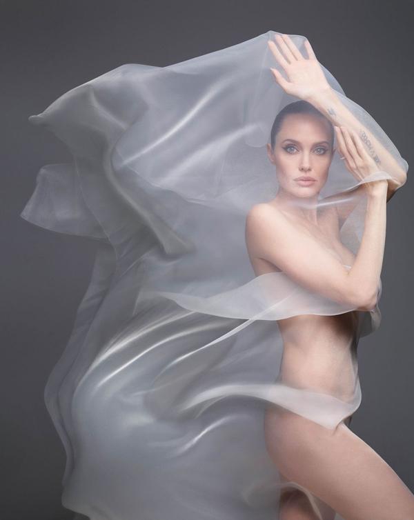 Nữ diễn viên 44 tuổi thành thật về bản thân: Cơ thể tôi đã trải qua rất nhiều vấn đề trong thập kỷ qua, đặc biệt là bốn năm qua. Tôi có cả những vết sẹo hữu hình và vô hình trong đó. Jolie từng trải qua ca phẫu thuật cắt bỏ hai bầu ngực để ngăn ngừa ung thư vú và sau đó cô tiếp tục phải cắt bỏ buồng trứng.
