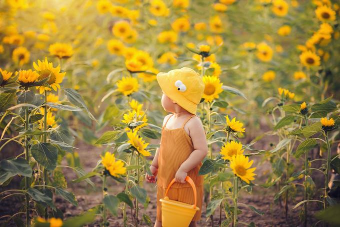 Cô bé được bố mẹ thay cho bộ đồ màu vàng để chụp ảnh ở cánh đồng hoa hướng dương.