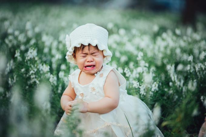Nhiếp ảnh gia bắt kịp nhiều biểu cảm hồn nhiên, đáng yêu của Suri khi khóc. Mỗi khi nhìn vào những tấm hình này, bố mẹ Suri đều bật cười vui vẻ.