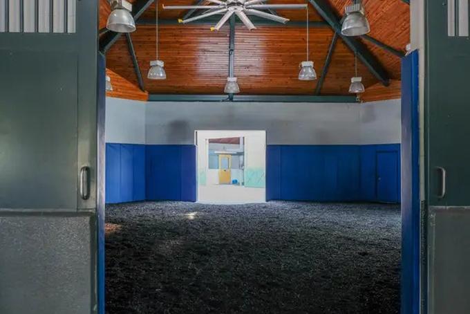 Khu vực dành cho việc sinh sản của đàn ngựa được xây dựng hiện đại, sạch sẽ với những bức tường được ốp đệm, sàn nhàlát cao su không trơn. Ảnh: BI.
