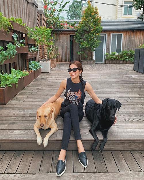 Tăng Thanh Hà ăn mặc giản dị, ngồi thảnh thơi vui đùa cùng hai chú chó cưng Molly và April của mình.