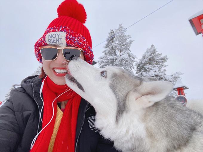 Người đẹp thích thú chơi đùa với một chú chó Alaska cao lớn.