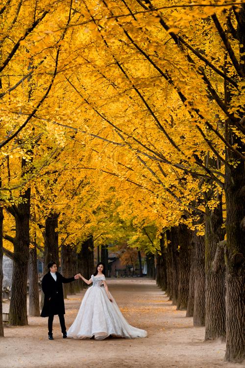 Cả hai rất yêu thích cảnh sắc thiên đường mùa thu Nami vì đây là nơi quay phimBản tình ca mùa đông, có thảm lá vàng từ cây ngân hạnh mang vẻ đẹp mê đắm lòng người.
