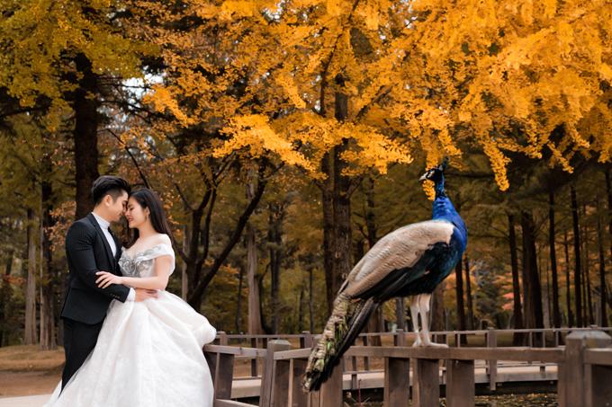 Gần đến kỷ niệm 4 năm ngày cưới (9/1/2016 - 9/1/2019), vợ chồng Vân Trang một lần nữa hóa thân thành cô dâu, chú rể trong bộ ảnh kỷ niệm thực hiện ở đảo Nami, Hàn Quốc.