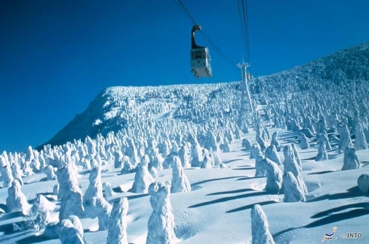 Du khách có thể ngắm quái vật tuyết từ cáp treo.