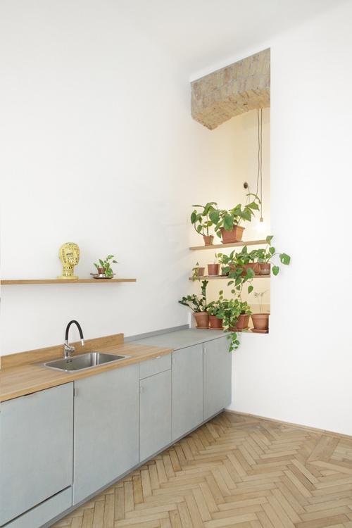 Cây xanh được đặt ở bậu cửa khu bếp, ngăn tách với phòng tắm ở bên cạnh bằng một tấm rèm trắng.