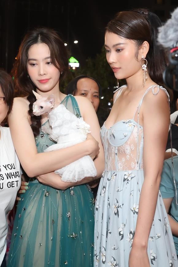 Nam Em gây chú ý khi bế mèo lên thảm đỏ. Bé mèo được cô cho mặc váy điệu đà.