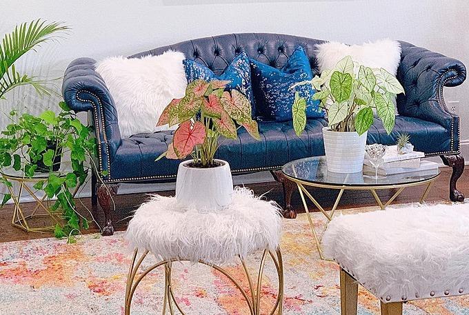 Từ sunroom nhìn thẳng sang phòng khách chính của gia đình. Quỳnh Hương cho biết ngôi nhà của vợ chồng cô được thiết kế theo lối kiến trúc hiện đại. Nhà có hai phòng khách: một cho các thành viên trong gia đình và một cho khách mời.