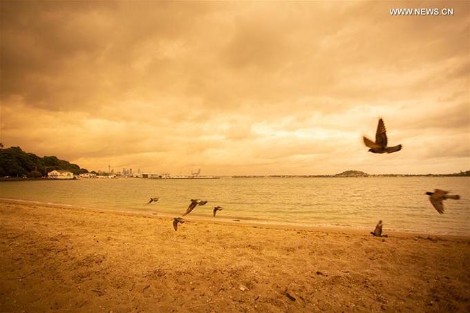 Vịnh Mission Bay từng rất nổi tiếng và thu hút đông khách du lịch vào thời điểm này mọi năm, giờ trở nên vắng vẻ.