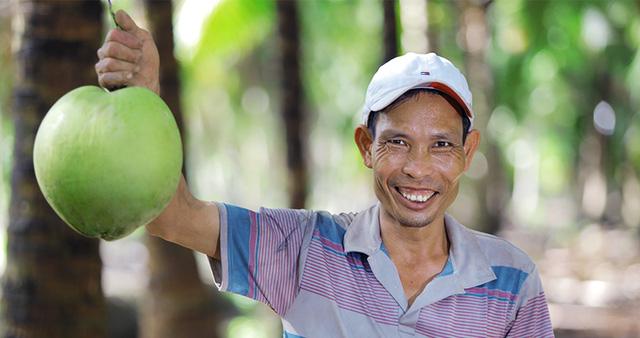 Sản phẩm xuất xứ từ vườn dừa đặc sản Bến Tre.