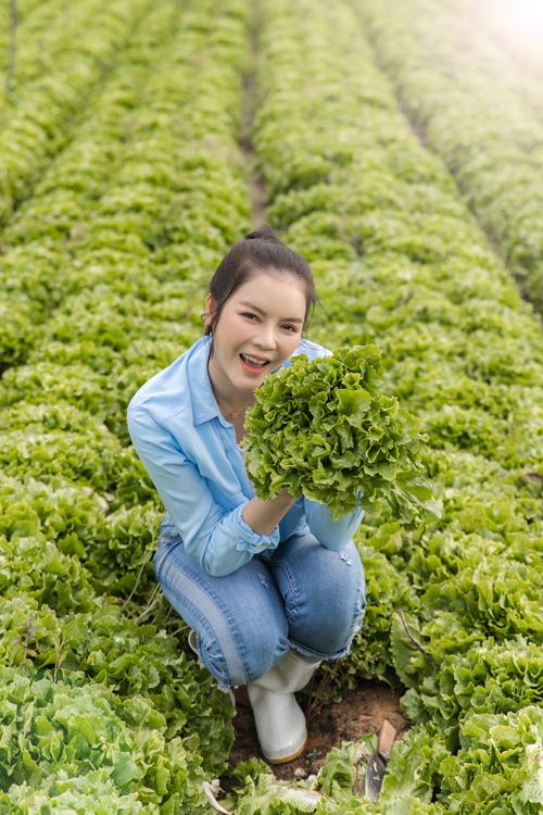 Người đẹp ăn rau xà lách mỗi ngày để giữ dáng thon.