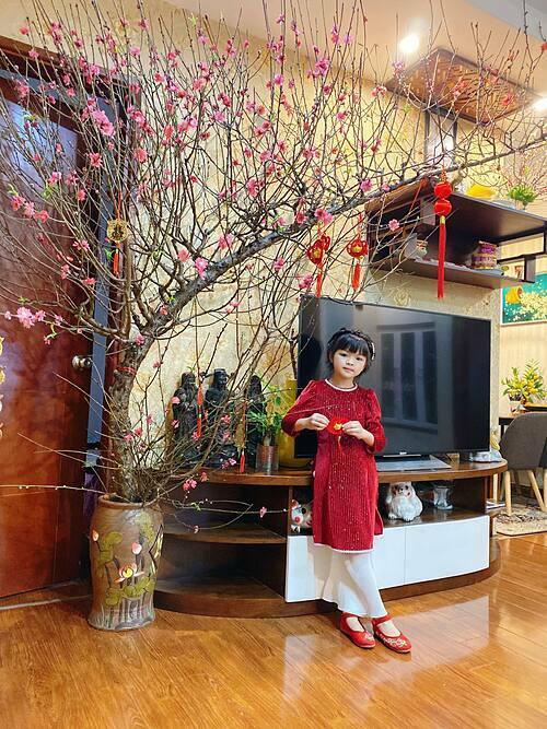 Không có chuyên môn về thiết kế, chị Nhung chỉ dọn dẹp và trang trí ngôi nhà theo cảm hứng và sở thích cá nhân. Tuy nhiên, với chị, điều quan trọng hơn cả là thông qua công việc này, các thành viên trong gia đình sẽ có một hoạt động chung, tăng kết nối. Hai cô con gái nhỏ của chị, dù mới 5 tuổi và 7 tuổi, cũng rấthào hứng cùng mẹ chuẩn bị cho ngày Tết.