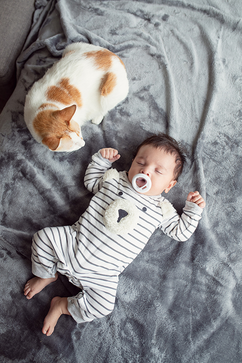Trộm vía Henryk rất ngoan. Cậu nhóc mới hơn 2 tháng tuổi nhưng biết tự chơi và không la quấy quá nhiều. Tôi mong rằng trong năm mới, bé vẫn cứ phát triển theo hướng như vậy, Phương Mai chia sẻ.