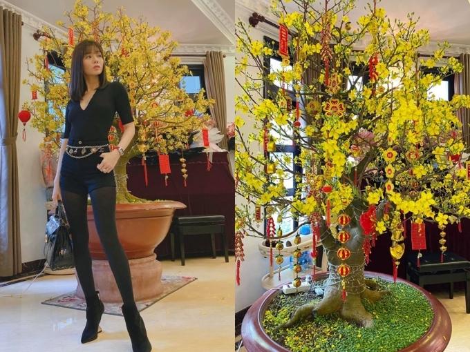 Cây mai vàng rực tô điểm không khí mùa xuân cho biệt thự nhà ca sĩ Lệ Quyên.