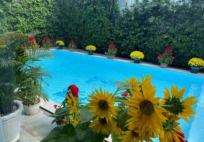 Biệt thự củavợ chồng nam diễn viên có hồ bơi, xung quanh trang trívài chục chậu hoa Tết.