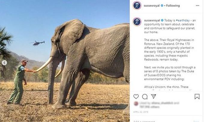 Ảnh do Harry đăng trên Instagram hồi tháng 4/2019. Ảnh: Instagram.
