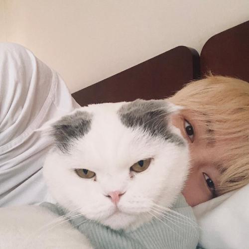 Hình ảnh mới của Ahn Jae Hyun.