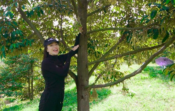 Từ khi làm trang trại, Trà Ngọc Hằng mới được tận mắt trông thấy hoa sầu riêng - loại quả cô đã ăn rất nhiều lần.