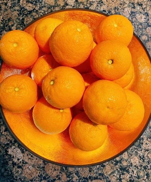 Một đĩa đầy ắp quả cam vừa được Phạm Hương thu hoạch trong vườn để sử dụng cho gia đình.