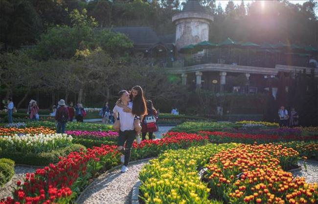 Các cặp đôinhư đang lạc giữa chốn thần tiên, nơi vườn hoa Le Jardin d'amour bừng sáng với những vạt tulip trải dài, vườn Uyên ương với chú công xòe chiếc đuôi sặc sỡ được dệt bởi nghìn bông tulip, hay bức tường hoa rực rỡ tại quảng trường Ước hẹn...