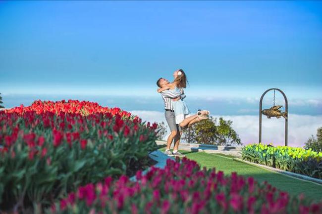 Bên cạnh đó, dịp Valentine và 8/3 này, Bà Nà Hills còn có một vườn hồng lớn tại Happy Garden, với hơn 50 giống hồng ngoại đủ màu sắc, hương thơm. Không gian triệu đóa hồng này hứa hẹn là điểm đến đặc biệt của miền Trung trong mùa xuân. Đại diện khu du lịch cho biết từ cuối tháng 2 năm nay, hoa sẽ bắt đầu nở nhiều.