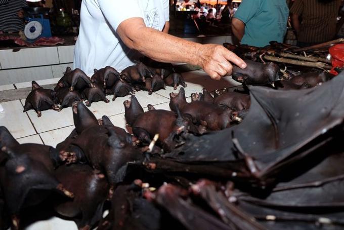Thịt dơi được bày bán tại chợ Tomohon, đảoSulawesi,Indonesia. Ảnh: AFP.