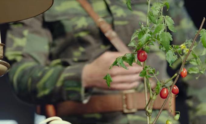 Jung Hyuk trong Hạ cánh nơi anh trồng một cây cà chua.