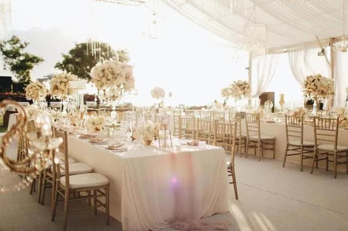 Đám cưới có quy mô nhỏ, mang tông trắng - hồng pastel. Bàn tiệc được tô điểm với các bình hoa hồng trắng. Uyên ương chọn ghế Chiavari cho không gian tiệc.