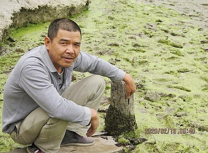 Ông Đào Văn Đến phát hiện dưới ao nuôi thả cá của gia đình tại thôn 11, xã Lại Xuân, huyện Thủy Nguyên (Hải Phòng) 13 cọc gỗ đang trong quá trình bị mục lộ thiên sau khi tát cạn ao. Ảnh: Giang Chinh