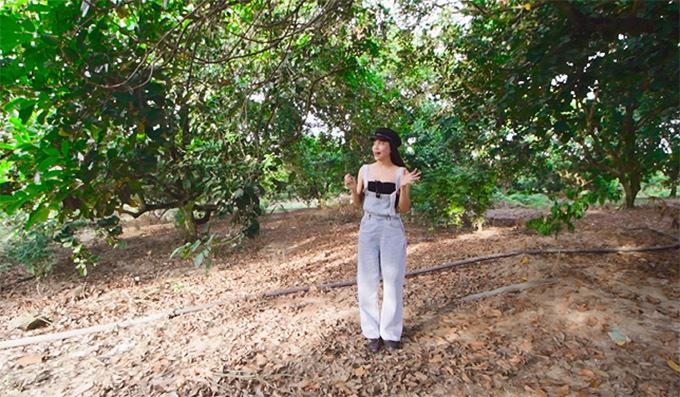 Giọng ca quê Cà Mau thuê người cắt cỏ, chăm sóc vườn cây hàng ngày. Khu đất được phân ra từng lô để trồng những loại cây ăn trái khác nha như mít, đu đủ, xoài, chuối...