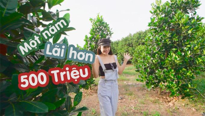 Theo Trà Ngọc Hằng, mỗi năm vườn cây ăn trái sẽ cho thu nhập hơn 500 triệu đồng. Đây là hướng kinh doanh mới của nữ ca sĩ, sau thời gian mởnhà hàng và shop mỹ phẩm tại TP HCM.