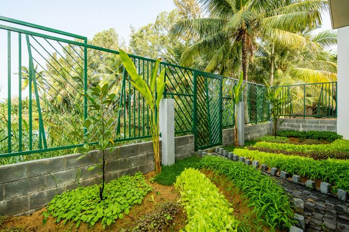 Sau biệt thự còn cóvườn rau nhỏ để gia chủtrồng trọt.
