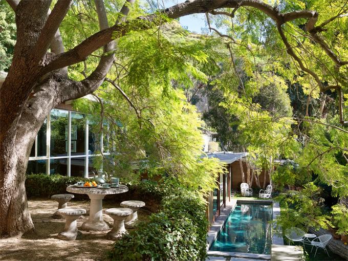 Không gian rợp cây xanh bên ngoài ngôi nhà.