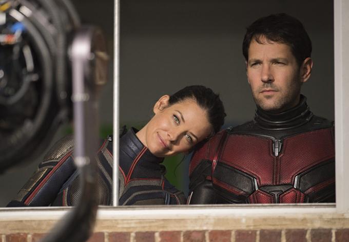 Evangeline Lilly được yêu mến với vai chiến binh Ong trong phim Người Kiến.