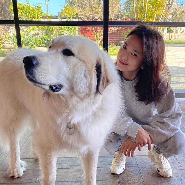 Song Hye Kyo hiện đã về Hàn Quốc, sau thời gian ở Mỹ.