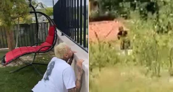 Chris Brown sợ hãi trốn sau tường.
