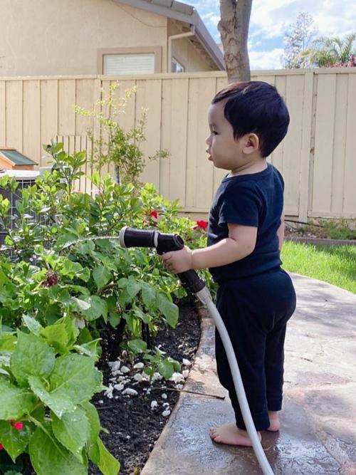 Hơn một tuổi, Maximus chập chững biết đi, thích chạy lon ton quanh vườn và cầm vòi nước tưới cây. Phạm Hương khoe: Max làm giỏi lắm các bác ạ.