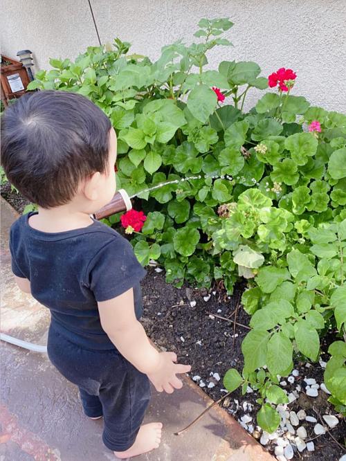 Phạm Hương cho biết khu vực cô sinh sống ở Los Angeles ổn định trước dịch Covid-19. Tuy nhiên, gia đình cô tuân thủ ở nhà đảm bảo an toàn. Mùa dịch nên công viên bị cấm. Mẹ cho bé tươi cây vừa vận động vừa hít thở không khí trong lành, hoa hậu nói.
