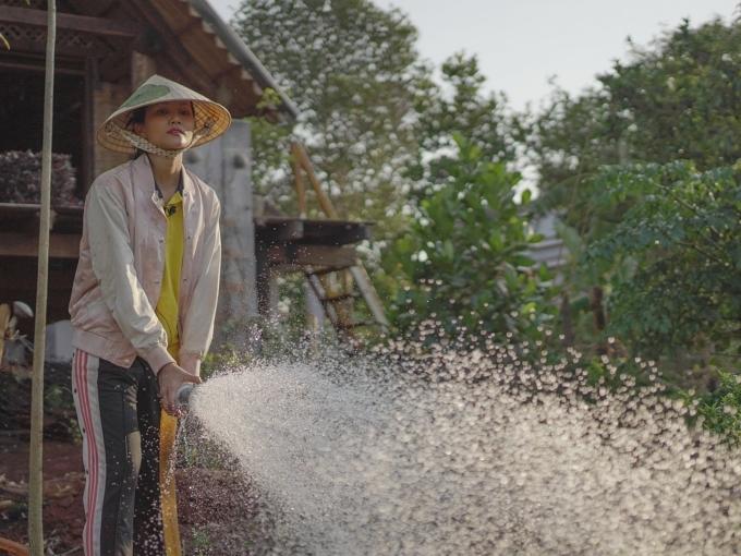 Buổi chiều khi nắng dịu đi, Hoa hậu H'Hen Niê tưới cây quanh vườn, cho heo ăn...
