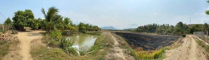Khu đất được chia thành ba phần: 7.000 m2 để trồng lúa, kế đến là ao cá và phía ngoài gồm một số loại cây ăn quả như xoài, dừa, bưởi...