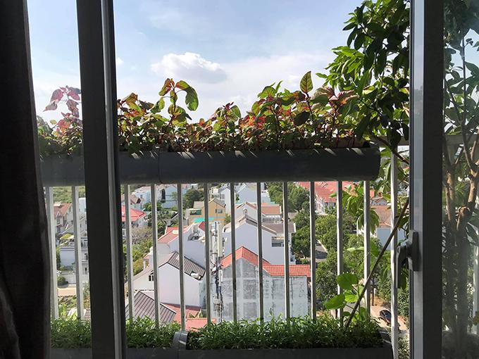Sau khi cân nhắc các phương án, vợ chồng chị Trang chọn trồng rau ở ống nước để tối ưu diện tích ban công, giúp hai con nhỏ có chỗ vui đùa.
