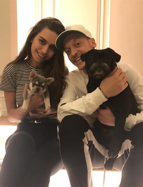 Ngôi sao của Arsenal nuôi hai chú chó làBalboa và Pablito.